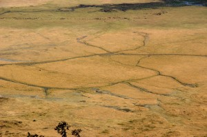 Ngorongoro-Krater,Tansania
